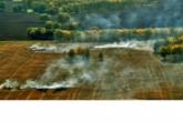 В Новосибирской области установлено начало пожароопасного сезона