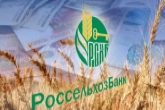 Россельхозбанк направит около 30 млрд рублей на реализацию инвестпроектов в Новосибирской области в рамках программы господдержки