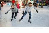 Безопасность детей – приоритетный вопрос комиссии по делам несовершеннолетних Новосибирской области