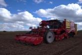 Россельхозбанк помог новосибирскому производителю чипсового картофеля обновить технику