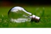Новосибирская область присоединилась к международной экологической акции «Час Земли»