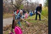 Более 800 человек приняли участие в экологическом субботнике в Дендропарке