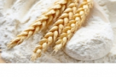 Производители муки и хлеба региона получат федеральную поддержку