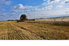 Губернатор поздравил аграриев Новосибирской области с успешным завершением уборочной кампании