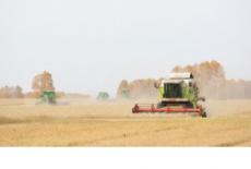Знак отличия «Почетный работник агропромышленного комплекса Новосибирской области» учрежден в регионе