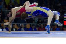 Сильнейшие борцы страны приедут в Новосибирскую область на чемпионат России
