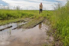 В Новосибирской области будет введён режим ЧС в сельском хозяйстве