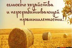 Уважаемые ветераны и работники сельского хозяйства и перерабатывающей промышленности! Поздравляем вас с профессиональным праздником.