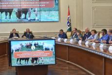 Мясное скотоводство станет одним из драйверов развития сельских территорий в Новосибирской области