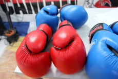 Александр Шеломенцев: Как удержаться на ринге