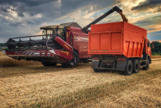 Аграрии Новосибирской области намолотили первый миллион тонн зерна
