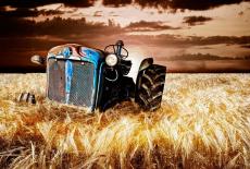 В зоне рискованного земледелия
