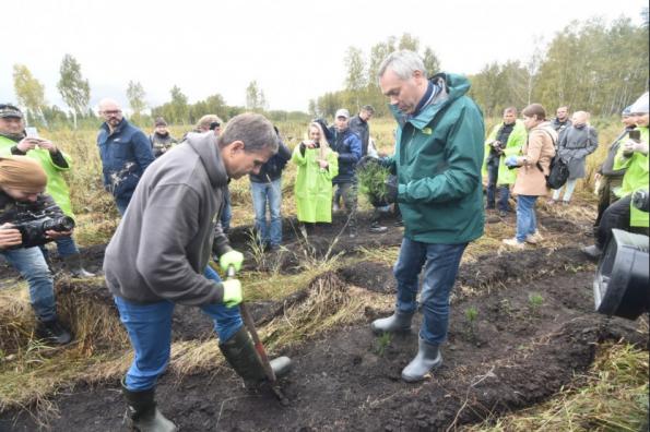 Губернатор Андрей Травников принял участие в благотворительной акции компании S7 по высадке деревьев