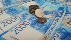 Гранты почти на 170 млн рублей получат фермеры Новосибирской области в 2020 году