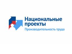 Руководителям новосибирских предприятий рассказали о возможностях нацпроекта «Повышение производительности труда и поддержка занятости»