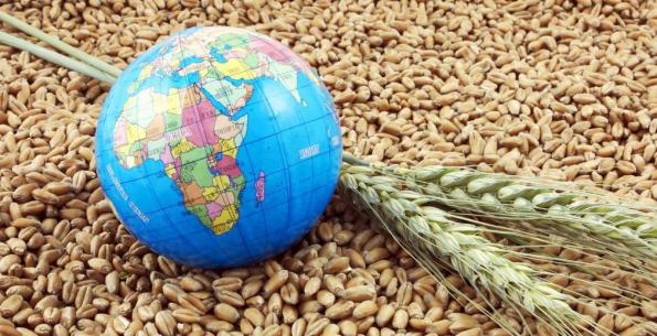 Россельхозбанк открывает международный рынок для предприятий Новосибирской области