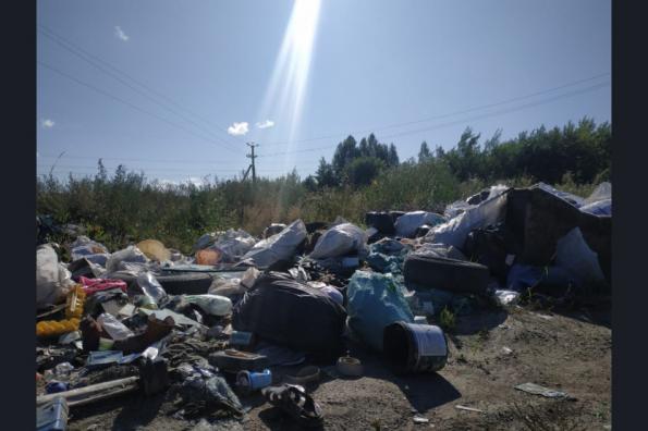 Владельцев земель с несанкционированными свалками заставят убраться