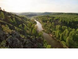 Пожарную безопасность лесов и сельхозугодий Новосибирской области контролируют в воздухе и на земле