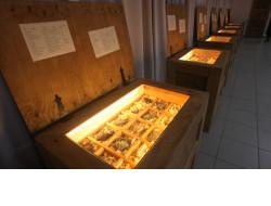 Новые технологии будут использованы в популяризации музеев Новосибирской области