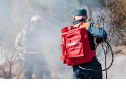 Минприроды региона: лесные пожары не являются причиной загрязнений воздуха в Новосибирской области