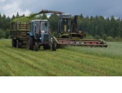 Доволенский район первым в области завершил заготовку кормов