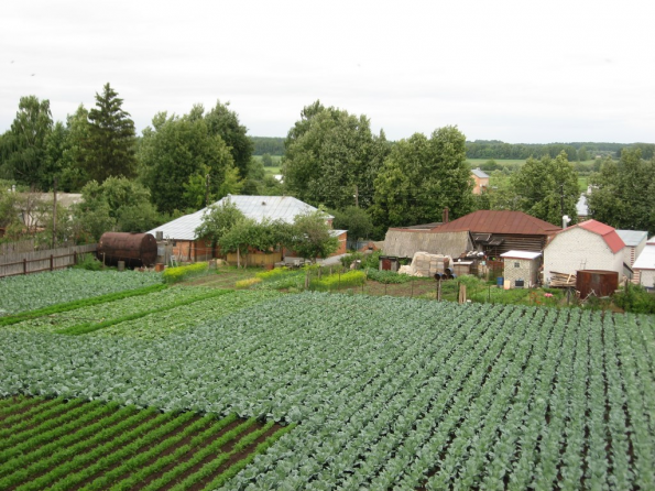 Сельский бизнес для горожанина: взгляд маркетолога
