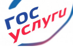 Жители Новосибирской области за полгода заказали в пять раз больше услуг через портал Госуслуг