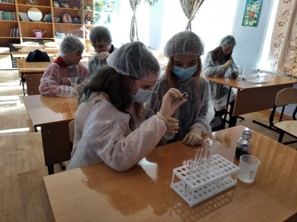 Работа школьной экологической лаборатории СОШ с. Легостаево, созданной в рамках проекта по развитию экотроты «Зверобой»