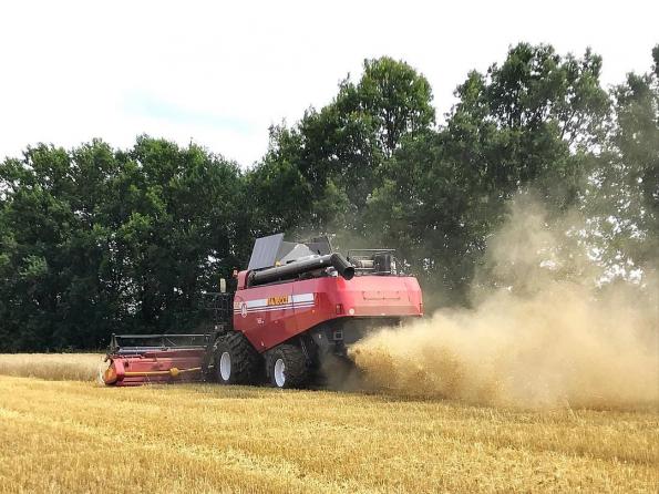 Первые сельхозпредприятия Новосибирской области завершили уборку зерновых
