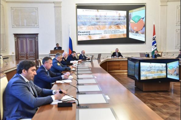 Новосибирская область продолжает наращивать объемы переработки сельхозпродукции и площади хранения зерна
