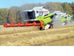 Сельхозпредприятия Маслянинского и Мошковского районов первыми в области завершили уборку зерновых культур