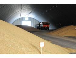 Аграрии Новосибирской области намолотили три миллиона тонн зерна
