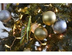 Более 2,5 тысяч мероприятий запланировано в Новосибирской области во время новогодних праздников