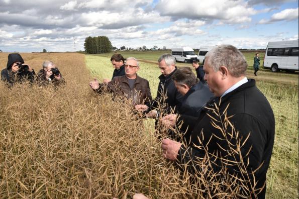 Губернатор обсудил с руководителями сельхозпредприятий Коченёвского района завершение уборочной кампании