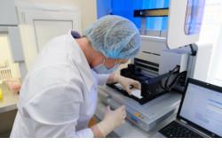 Новосибирским ученым обновят научное оборудование почти на миллиард рублей в рамках нацпроекта