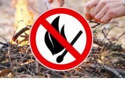 Минприроды региона напоминает жителям о необходимости соблюдения мер пожарной безопасности