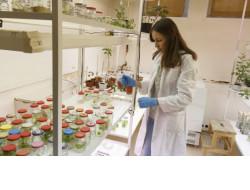 Миннауки Новосибирской области предложило увеличить меры финансовой поддержки молодых ученых