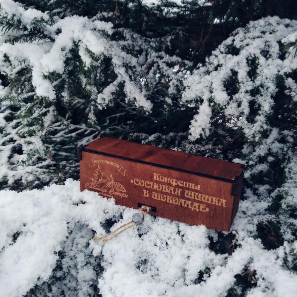 Теплое послание из Сибири. «Столицы Сибири»