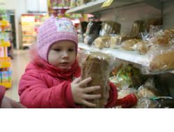 Собственный товарный знак «Новый Сибирский Продукт» появится в Новосибирской области