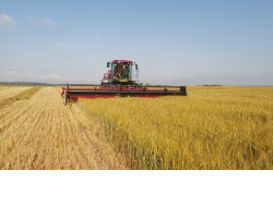 Совместное новосибирско-белорусское предприятие по сборке сельхозтехники может быть создано в нашем регионе