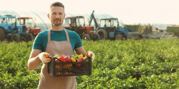 Новосибирский филиал Россельхозбанка выдал первые льготные кредиты фермерам – членам АККОР