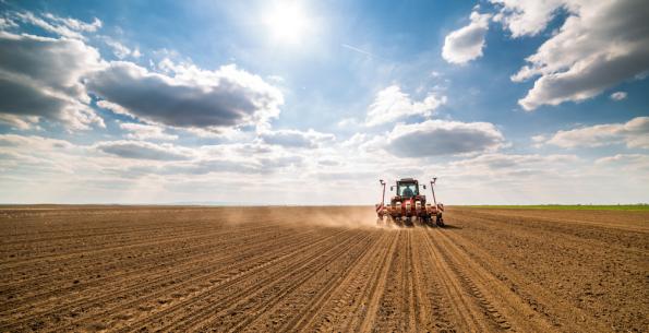 Россельхозбанк увеличил объем кредитования АПК Новосибирской области более чем на 40%