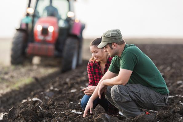 Новосибирские фермеры оценили новый механизм поддержки МСБ от Россельхозбанка