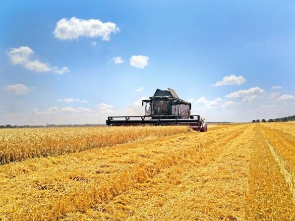 Экспорт российской сельхозтехники за 6 мес. 2018 года вырос на 55% - до 6,5 млрд рублей