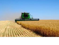 Более 1,5 тысяч единиц новой техники и оборудования приобретено аграриями региона в 2021 году