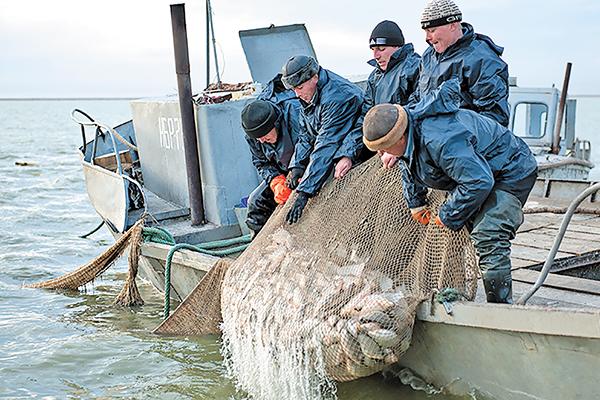 рыбалка на чанах отчет вести с водоемов