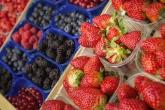 350 тонн ягод собрали сельхозпроизводители Новосибирской области