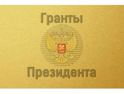 Более 50 некоммерческих организаций Новосибирской области получат гранты Президента РФ